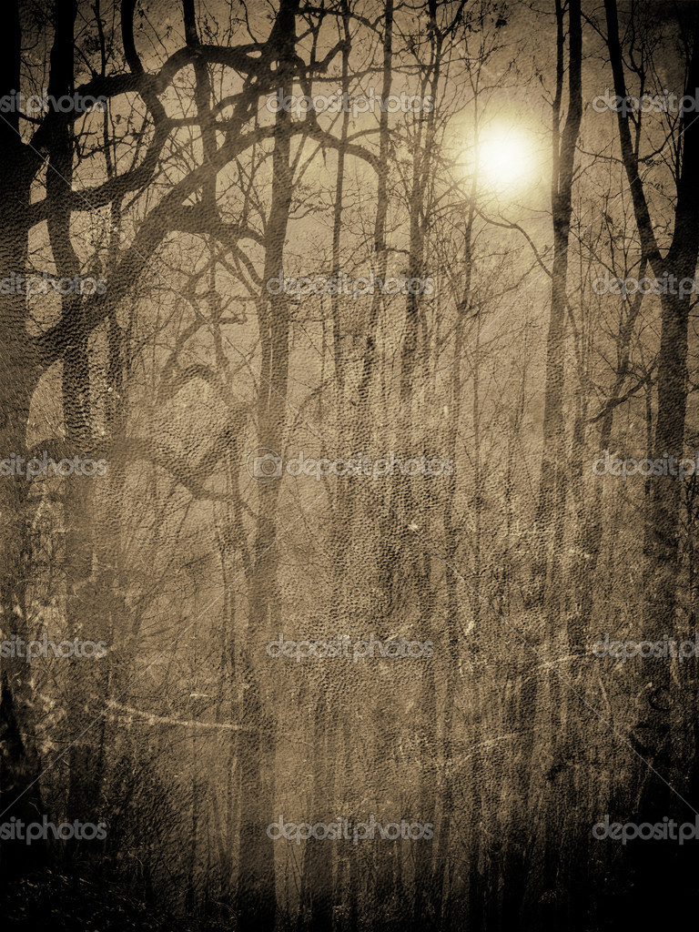Scary forest in the night with moonlight illustration — Stock Photo #8139157