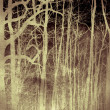 Scary forest — Stock Photo #8187873