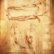 Leonardo da vinci style arms illustration — Stock Photo