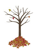 High quality autumnal tree isolated on white — Stock Photo