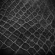 Snake skin black and white close up — Stock Photo #8539297