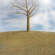 One lonely tree in a dry plowed field - Stock Photo