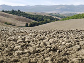 Plowed field in tuscany — Stock Photo