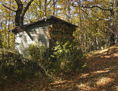 Hunter cabin in the forest with trees — Stock Photo