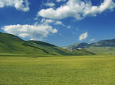Country landscape with grass meadow and blue sky — Stock Photo