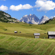 Alm and mountains in the Dolomites Alps — Stock Photo