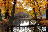 Fall autumn landscape with bridge and water — Stock Photo