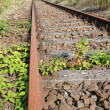 Old rusty railway track - Stock Photo