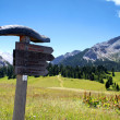 Way sign in the alps - Stock Photo