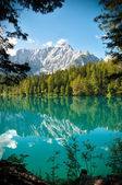 Italia - Udine - Lago di Fusine e monte Mangart with woods frame — Stock Photo