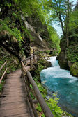 Vintgar gorge and wood path at Ble - Slovenia — Stock Photo