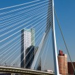 Erasmusbrug over Rotte river at Rotterdam - Netherlands — Stock Photo #8217310