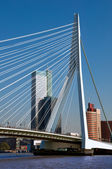 Erasmusbrug over Rotte river at Rotterdam - Netherlands — Stock fotografie