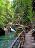 Vintgar gorge and wooden path at Bled - Slovenia — Stock Photo