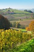 Grasslands hils and wineyards at Robaje - Croatia — Stock Photo