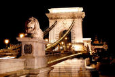 Night view of Chain Bridge – Hungary Budapest — Stok fotoğraf