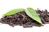 Pu-erh tea and fresh tea leaves — Stock Photo