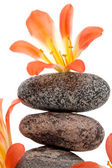 A beautiful flower on a top of the stone tower — Stock Photo