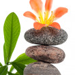 Zen stones with flowers and green plant - Stock Photo