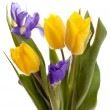 Bunch of beautiful yellow tulips and irises — Stock Photo