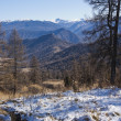 First snow in Altai mountains — Foto de stock #8214029