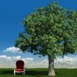 Armchair and tree in the meadows - Stock Photo