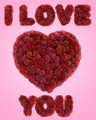 Cuore di rose rosse — Foto Stock