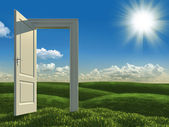 Open white door to the meadows — Stock Photo