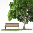 Isolated bench under tree - Zdjcie stockowe