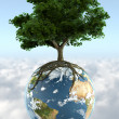 Tree on planet earth — Stock Photo