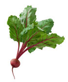 Beet isolated on white — Stock Photo