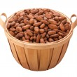 Stock Photo: Cocoa Bean Basket isolated on white with a clipping path