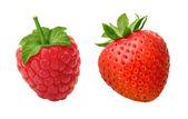 Raspberry & Strawberry isolated on white — Stock Photo