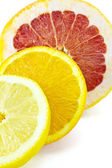 Slice of grapefruit, orange and lemon — Stock Photo