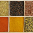 Six spices - Stock Photo