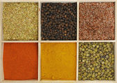 Six spices — Stock Photo