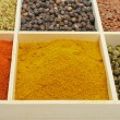 Curry spice - Stock Photo