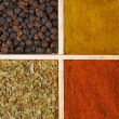 Four spices — Stock Photo