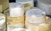 Goat cheese at farmer's market. — Stock Photo
