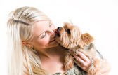 Affectionate pet. — Stock Photo