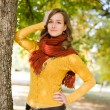 Gorgeous fall fashion girl. — Stock Photo #8328467