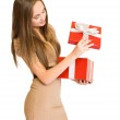 The big red gift box. — Stock Photo #8330460