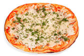 Oval pizza with cheese — ストック写真