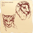 Stock Vector: Hand drawn ink portrait sketch of lion and cheetah heads