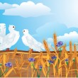 Couple of white pigeons with beautiful summer wild flowers and ears. — Stock Vector