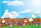 Couple of white pigeons with beautiful summer wild flowers. — Stock Vector