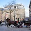 A carriage horse on Amsterdam Dam square — Photo