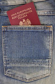 Passport in your pocket — Stok fotoğraf