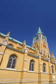 Cathedral, Lodz — Stock Photo