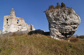 Mirów Castle — Stock Photo